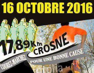 3 dossards pour les 17,89 km de Crosne 2016 (Essonne)