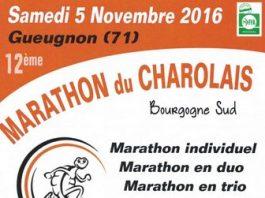 3 dossards pour le marathon du Charolais 2016 (Bourgogne)