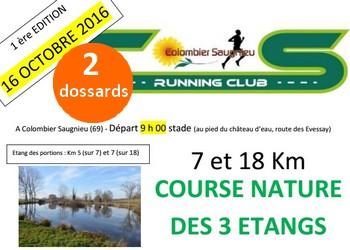 Photo of 2 dossards pour la Course nature des 3 étangs 2016, Colombier-Saugnieu (Rhône)