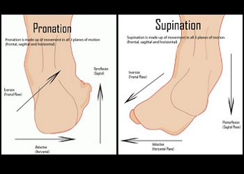 Photo of Pronation ou supination : qu'est-ce que c'est?