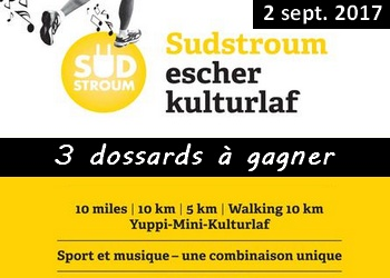 Photo of 3 dossards Escher Kulturlaf 2017 (5 & 10 km, Luxembourg)