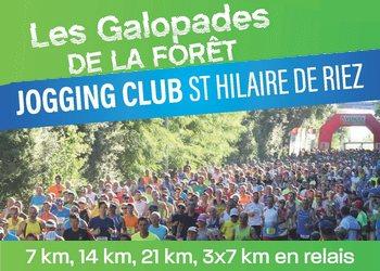 Photo of Galopades de la forêt 2020, Saint-Hilaire-de-Riez (Vendée)
