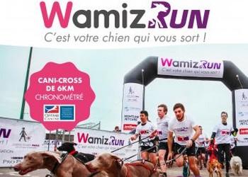 Photo of Wamiz Run 2020, Paris