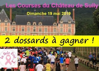 2 dossards Course du Château de Sully 2019 (Yvelines)