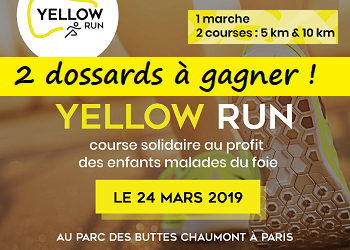 2 dossards Yellow Run 2019 (Paris)