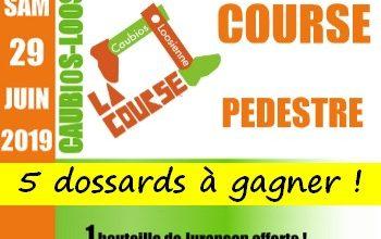 Photo of 5 dossards Course La Caubios-Loosienne 2019 (Pyrénées Atlantiques)