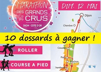 10 dossards Marathon des Grands Crus 2019 (Cote d'Or)