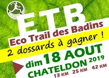 2 dossards Eco trail des badins 2019 (Puy de Dôme)