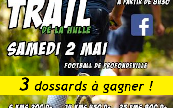 Photo de 3 dossards Trail de la Hulle 2020 (Belgique)