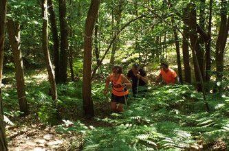 Photo of TSY – Le Trail des Sources de l'Yvette 2020, Lévis-Saint-Nom (Yvelines)